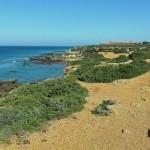 Acantilados y Pinares de Roche - Lugares - Javier Piris