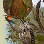 Águila real, Abejaruco y Búho Real