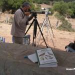 Observatorios Ornitologicos - Lugares-17