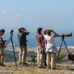 Observatorios Ornitologicos - Lugares-3