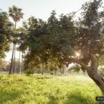 Parque Princesa Sofía - Lugares-6