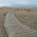 Playa Los Lances - Lugares-12